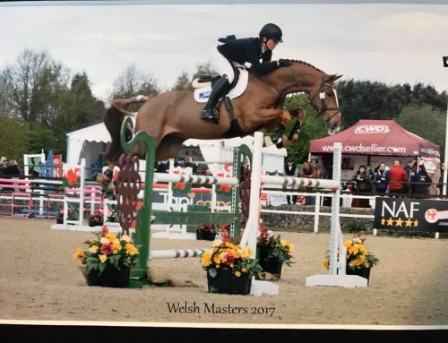 What a great results for The Billy Stud horses at the Welsh Masters
