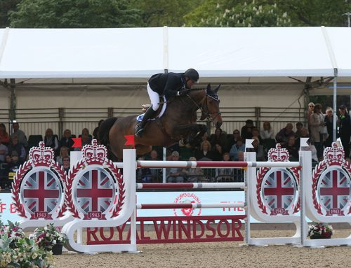 Addington Premier Show Update