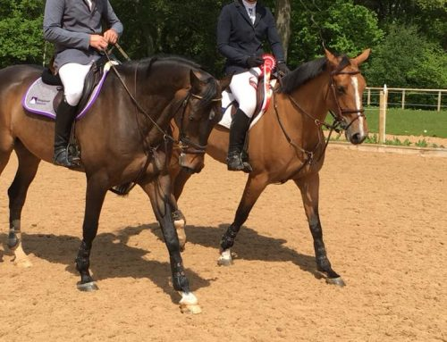 Billy Spiral qualifies for HOYS