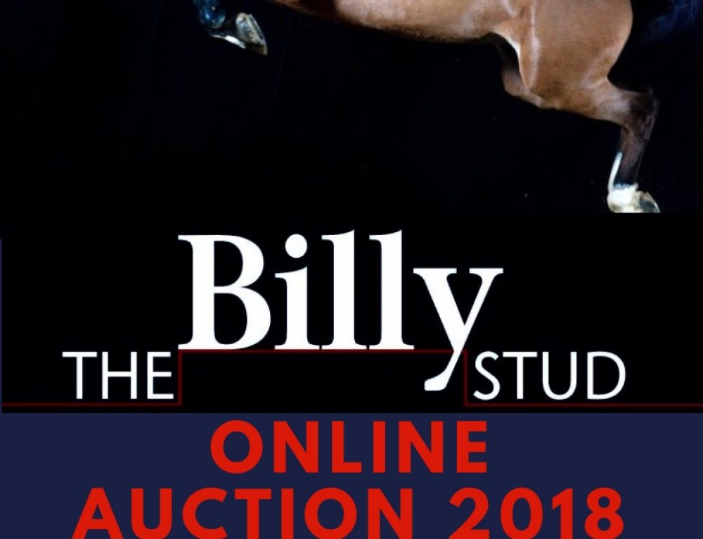 ONLINE AUCTION 2018 DATES ANNOUNCED