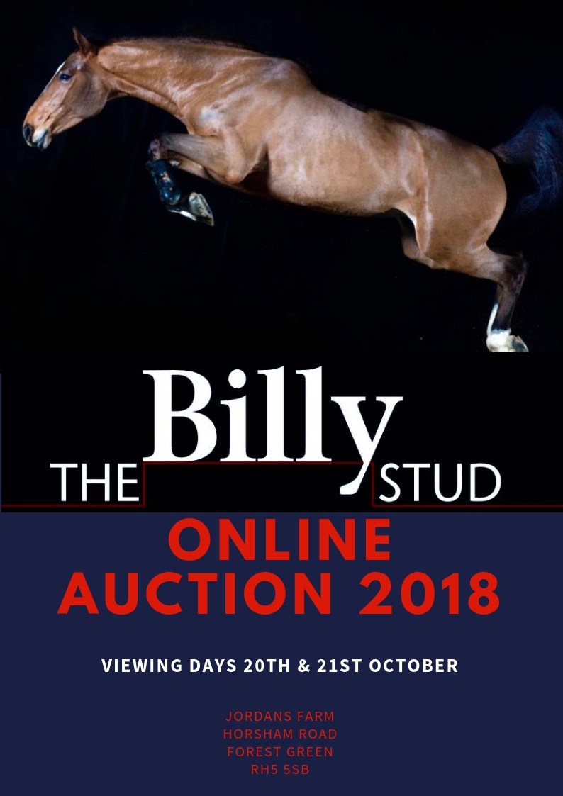 ONLINE AUCTION 2018 DATES ANNOUNCED – The Billy Stud