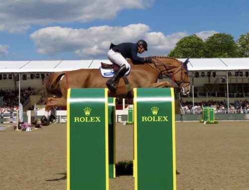 Billy Diamo headed for 5* team debut in St Gallen