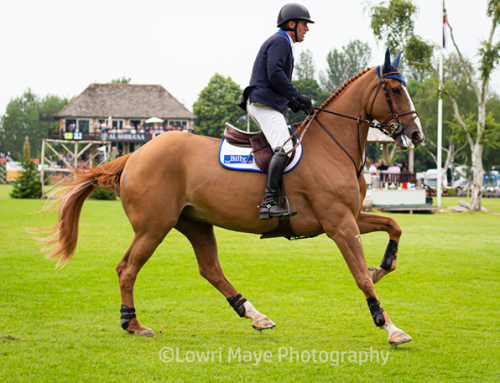Hickstead Derby Meeting 2019