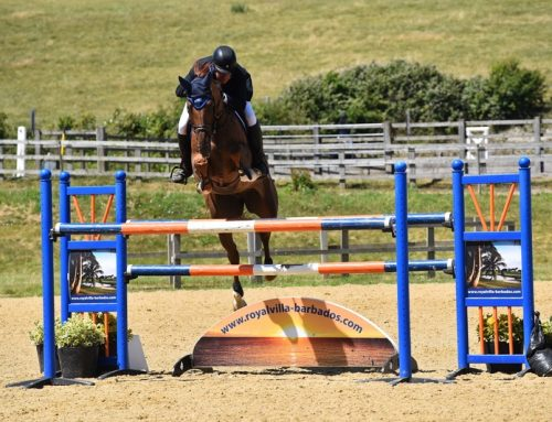 Billy Take That joins the team heading for HOYS!