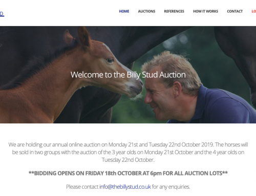 The Billy Stud Auction 2019 – All You Need To Know!