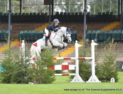 Billy Bilboa – Hickstead 5 Year Old Champion!