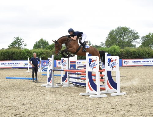 The Billy Stud – Set to showcase their most exciting collection of 4 year olds to date!