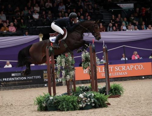 Top finish for Billy Marionette at HOYS!